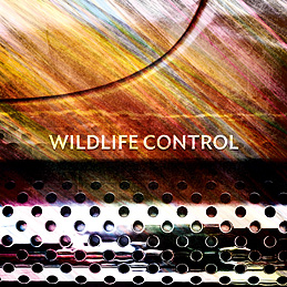 Wildlife Control (album cover)